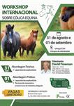 WORKSHOP INTERNACIONAL SOBRE CÓLICA EQUINA