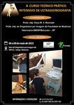 X CURSO PRÁTICO INTENSIVO DE ULTRASSONOGRAFIA EM EQUINOS