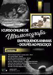 I CURSO ONLINE DE ULTRASSONOGRAFIA EM PEQUENOS ANIMAIS - DOS PÉS AO PESCOÇO!